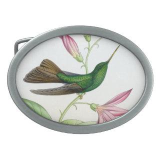 Kolibri-Vogel-Blumen-Blumentier-wild lebende Tiere Ovale Gürtelschnallen