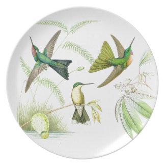 Kolibri-Vogel-Tier-Blumen-Blumentiere Essteller