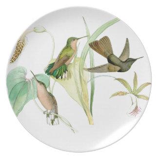 Kolibri-Vogel-Tier-Blumen-Blumentiere Melaminteller