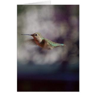 Kolibri während des Betriebs Karte