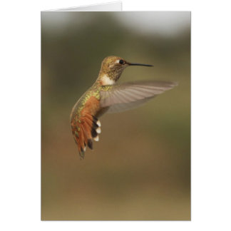 Kolibris 182a karte