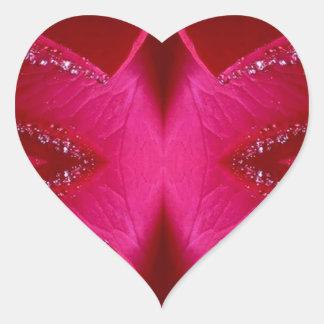 Kollektor-Ausgabe - rote n rosa Rose des Schein- Herz-Aufkleber