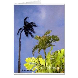 Kommender Sturm - Kauai, Hawaii Karte