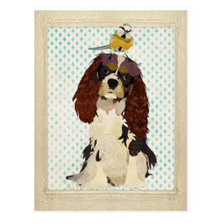 König Cavalier u. kleine Vogel-Postkarte Postkarte