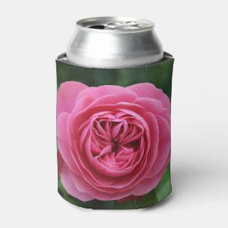 Können die cooleren Makro Rosen