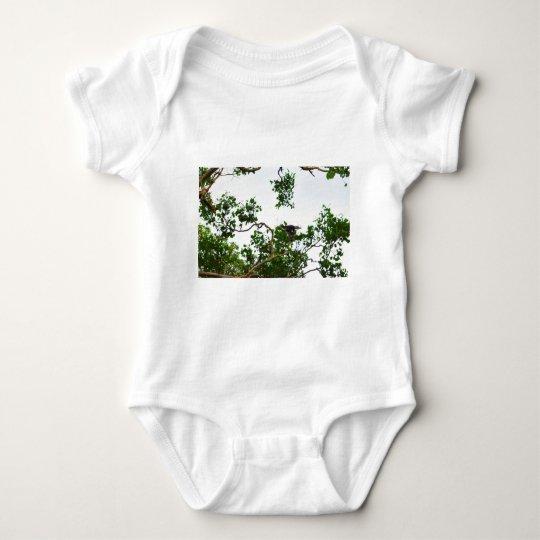 KOOKABURRA IM FLUG QUEENSLAND AUSTRALIEN BABY STRAMPLER