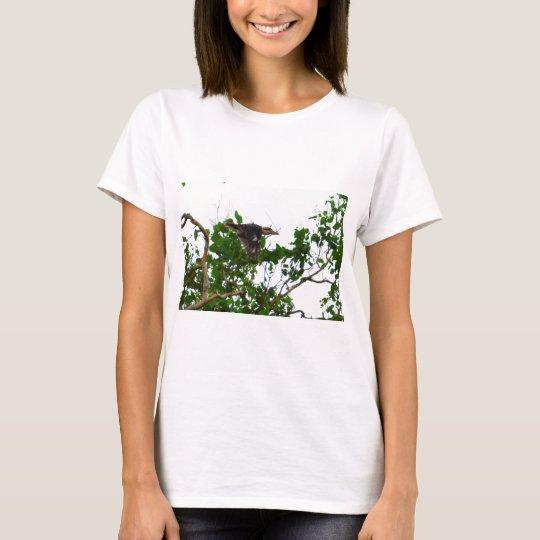 KOOKABURRA IM FLUG QUEENSLAND AUSTRALIEN T-Shirt