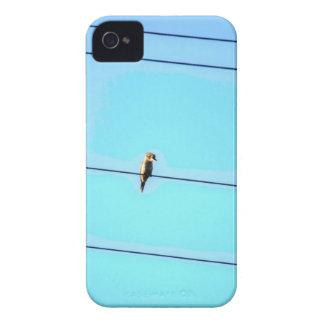 KOOKABURRA LÄNDLICHES QUEENSLAND AUSTRALIEN Case-Mate iPhone 4 HÜLLE