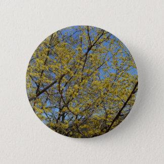 Kornelkirsche-Hartriegel und blauer Himmel mit Runder Button 5,7 Cm