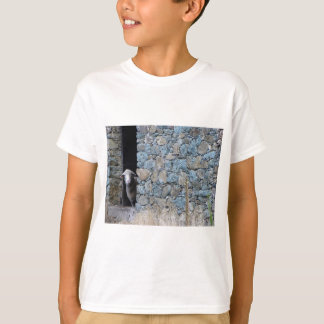 Korsika Schaf T-Shirt