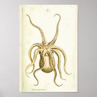 Kraken-Vintager Kopffüßer-Seegeschöpf-Kunst-Druck Poster