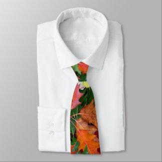 Krawatte für Fall-Eichen-Ahorn-Blätter-Druck