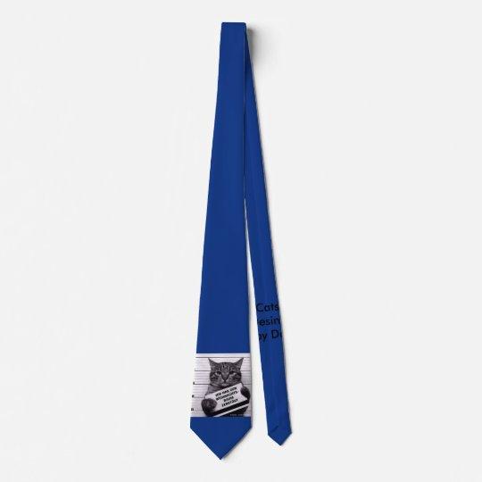 Krawatte Katze