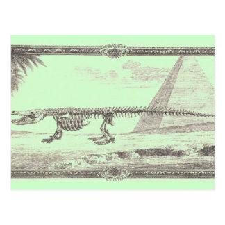Krokodil-Skelett-Illustration Postkarte