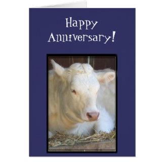 Kuh-Grußkarte des glücklichen Jahrestages weiße Grußkarte