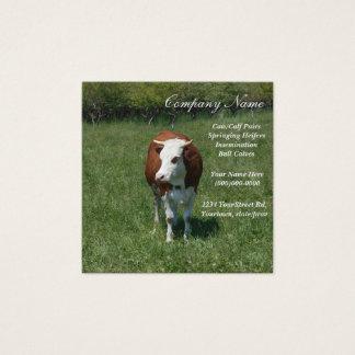 Kuh in der Weide Quadratische Visitenkarte