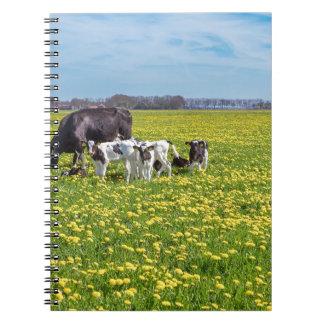 Kuh mit den Kälbern, die in der Wiese mit Spiral Notizblock