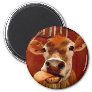 Kuh Runder Magnet 5,1 Cm
