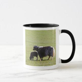 Kuh-und Kalb Yak, Lijiang Tasse