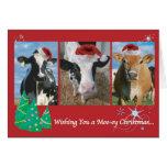Kuh-Weihnachten Karten