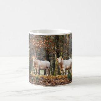 Kühe im Waldland, Frankreich Kaffeetasse