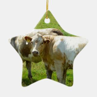 Kühe Keramik Stern-Ornament