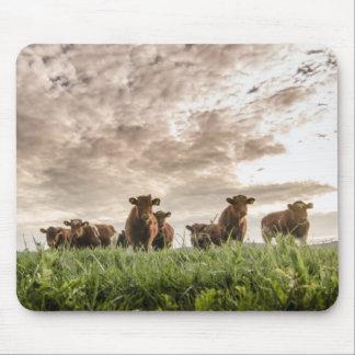 Kühe Mauspads