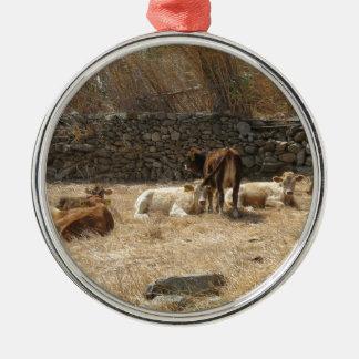 Kühe Silbernes Ornament