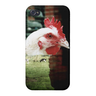 Kühe und Huhnfall iPhone 4/4S Case