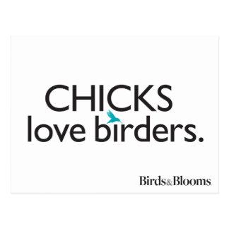 Küken-Liebe-Vogelbeobachter Postkarte