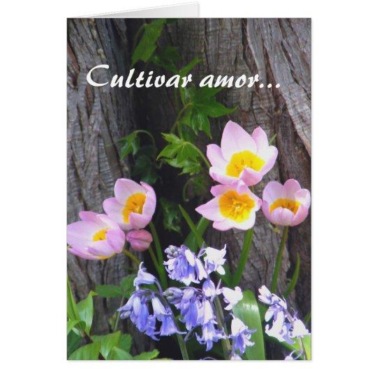 Kulturvarietät Amor Mitteilungskarte