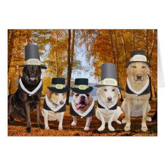 Kundengerechte lustige Hundepilger-Erntedank-Karte Karte