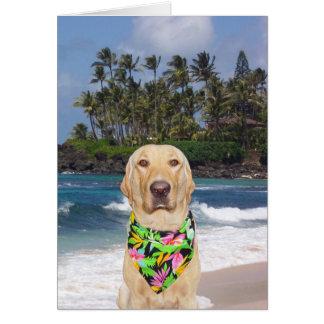 Kundengerechter hawaiischer Labrador-Geburtstag Grußkarte