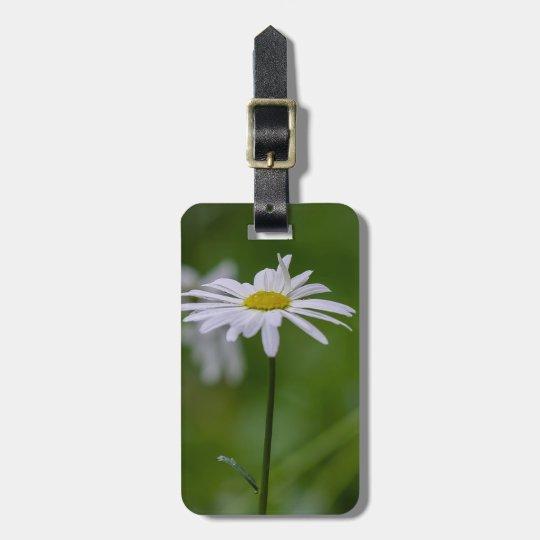 Kundengerechtes Frühlings-Gänseblümchen Kofferanhänger