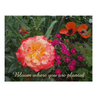 Kundengerechtes Rosen-Garten-Foto-Plakat Poster