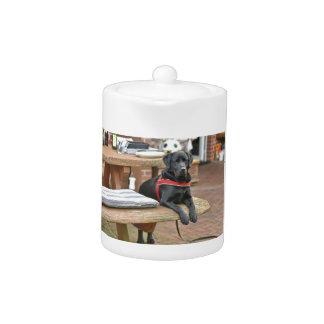 Kundengerechtes schwarzes Labrador retriever