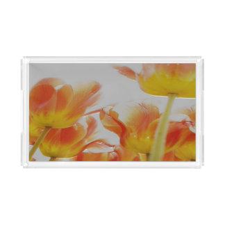 kundenspezifischer kleiner Rechteckbehälter Acryl Tablett
