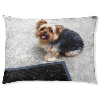 kundenspezifisches Hundebett im Freiengroß Haustierbett