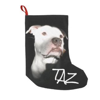 Kundenspezifisches Hundenamen-Foto Kleiner Weihnachtsstrumpf