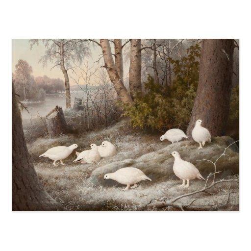 Kunstpostkarte Von Wrights Postkarten