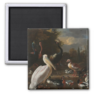 Kunstvögel Quadratischer Magnet