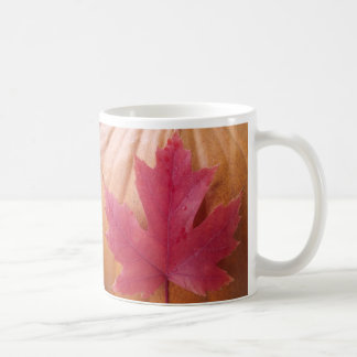 Kürbis-Fall-Blatt Kaffeetasse