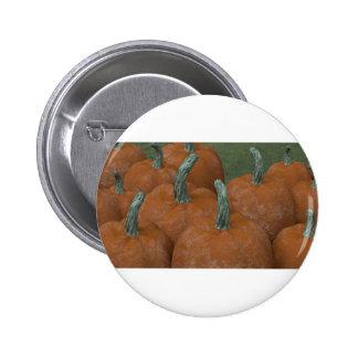 Kürbise Runder Button 5,7 Cm