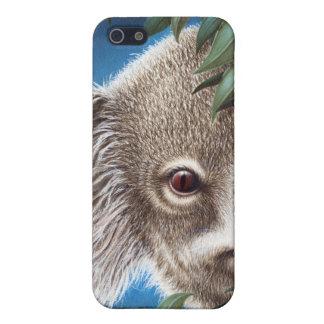 Kuriositäts-Koala iPhone 5C iPhone 5 Hülle