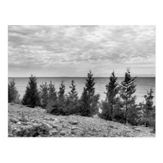 Küstenlinie schwarzer u. weißer Mackinac Insel-, Postkarte