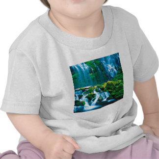 La cascade jumelle la procuration Willamette T-shirts