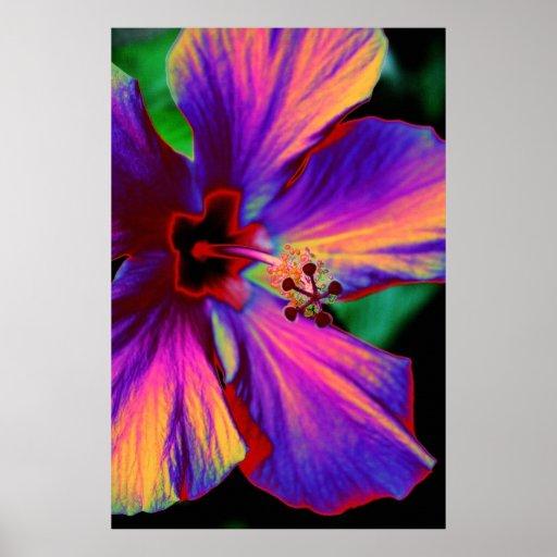 La fleur magique poster