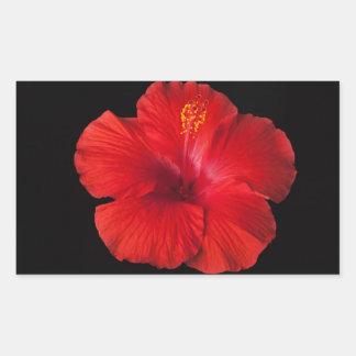 La fleur tropicale de ketmie rouge fleurit floral sticker rectangulaire