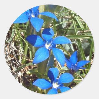 La gentiane bleue fleurit l'autocollant sticker rond