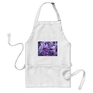La jacinthe fleurit le tablier